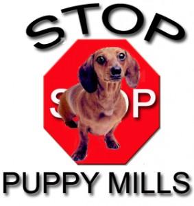 StopPuppyMills1
