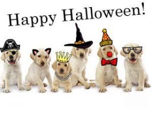 happy-halloween-by-doggies