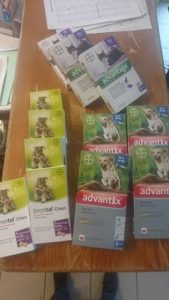 packets of dog medicines