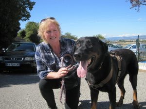 Big black and brown dog with new owner
