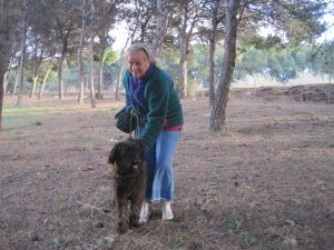 Dog with woman in pine forest