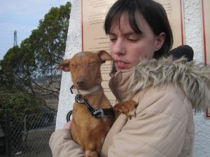 tiny podenco in arms of woman