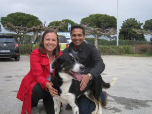 black and white dog with couple