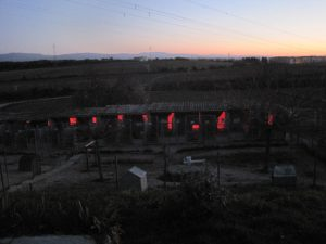 heated kennels SCPA Carcassonne